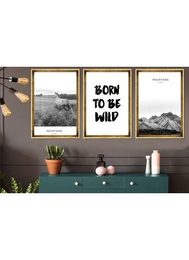 Çerçeve Home  Born To Be Wild Gold Çerçeve Tablo Seti Altın